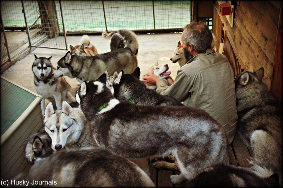 Peter e alcuni dei cani